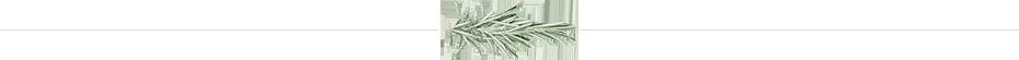 sep-rosmarino